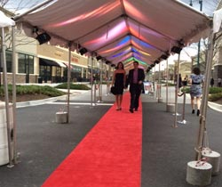 Creative Entertainment - Red Carpet