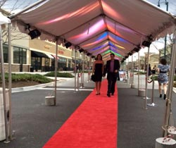 Creative Entertainment - Red Carpet and Stanchions